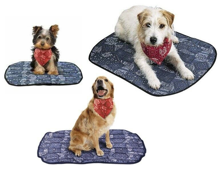 cooling mats for your pet this hot summer miracool pup mat. Black Bedroom Furniture Sets. Home Design Ideas