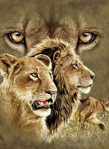 New Lion Lenticular 3D Picture Animal Poster Painting Home