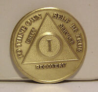 Alcoholic 1 Year Recovery 1 Yr Chip Medallion Coin Medal Token  AA Anonymous