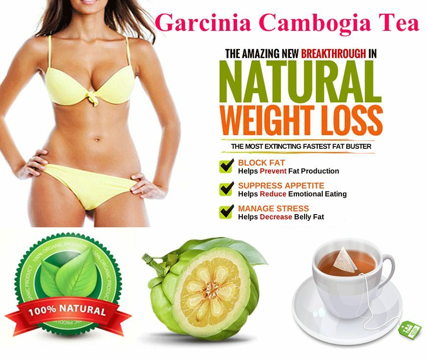 what is garcinia cambogia vitamins