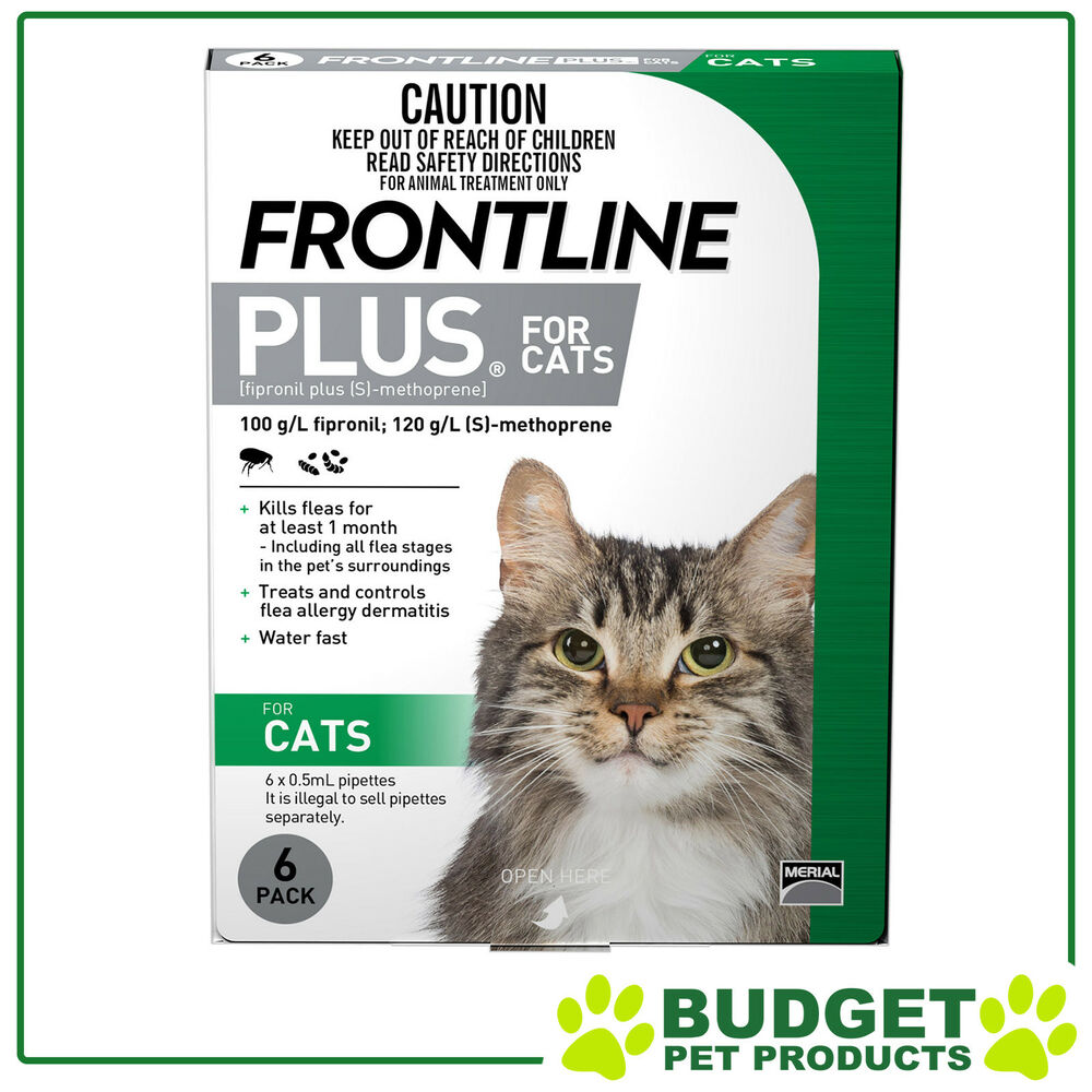 Frontline Plus For Cats 6 Pack Ebay