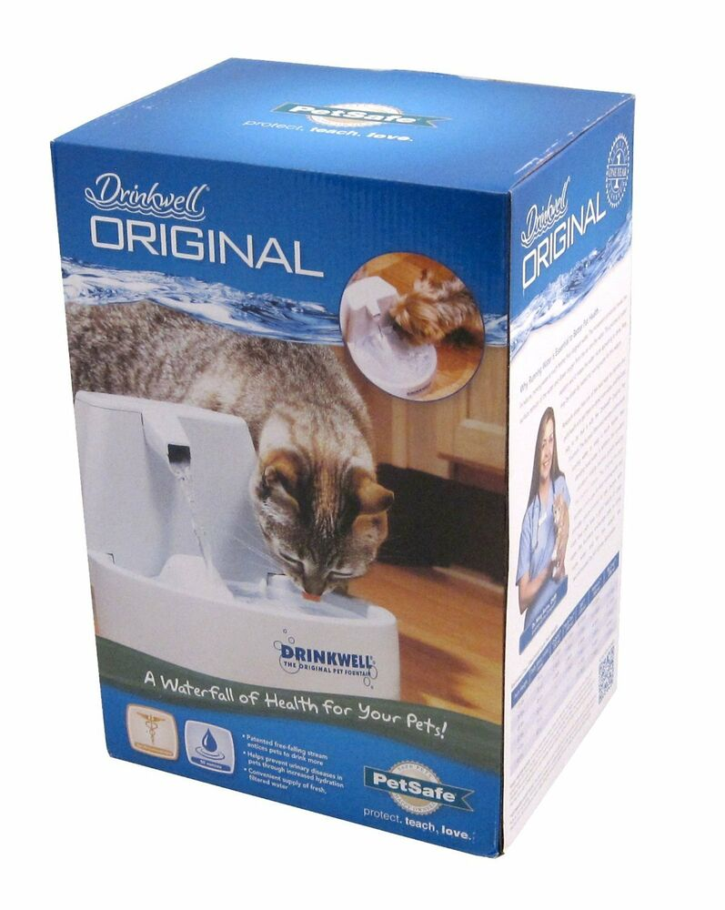 Water Filter For My Cat S Water Bowl