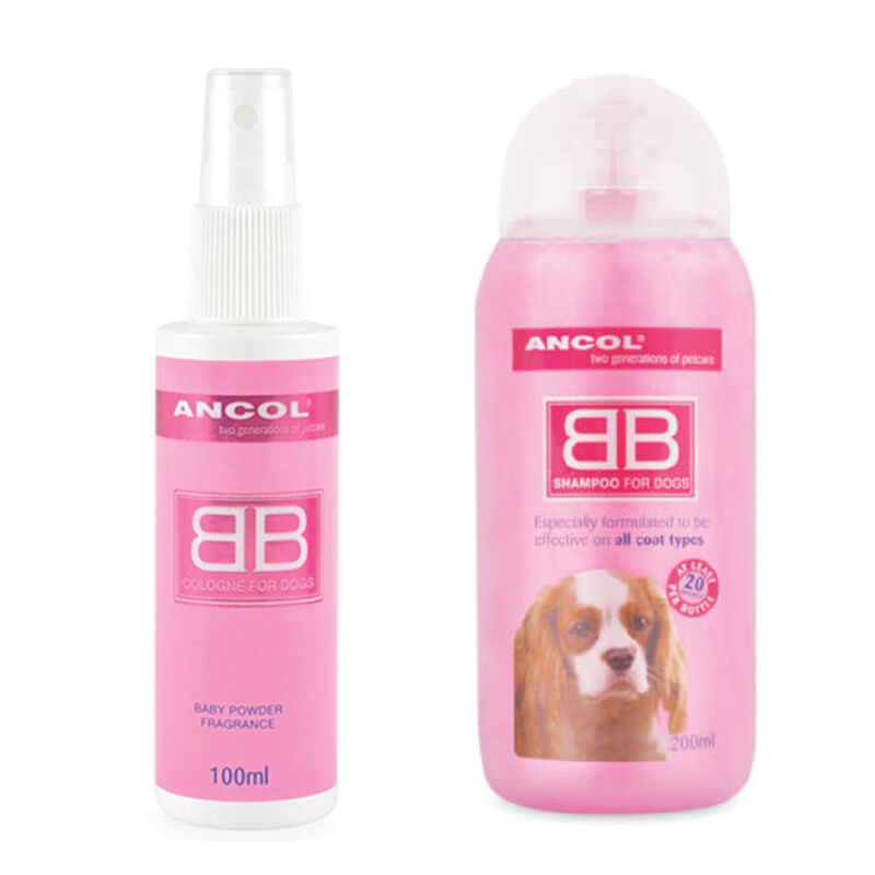 Scent Dogs Uk