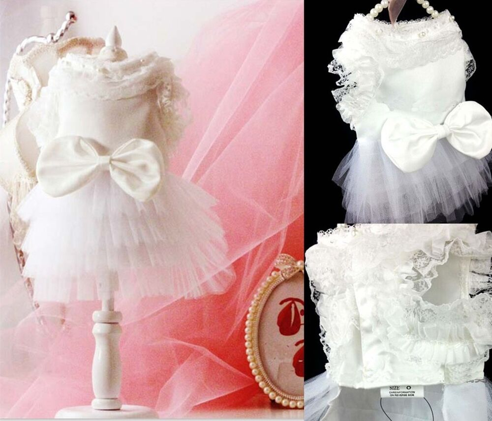 Small dog pet wedding dress bowknot clothes party white for Wedding dress for dog