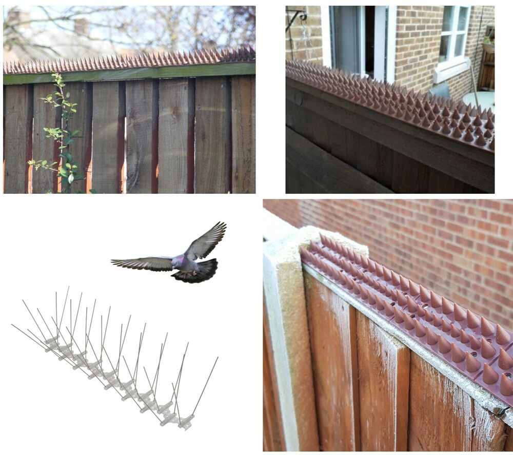 Fence Wall Window Ledge Spikes Anti Climb Pigeon Birds Cat