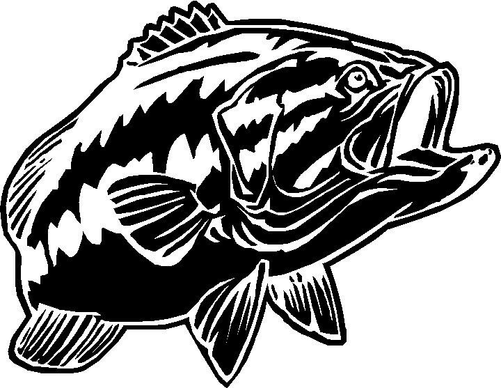 Fish vinyl decals fishing boat sticker graphics ebay for Fishing boat decals
