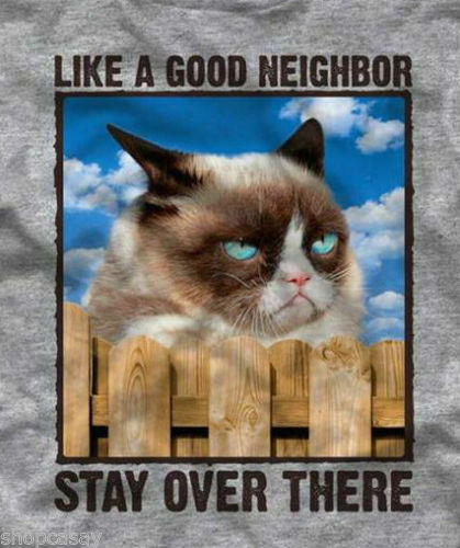 Grumpy Cat, like a good neighbor stay over there, Grey ...
