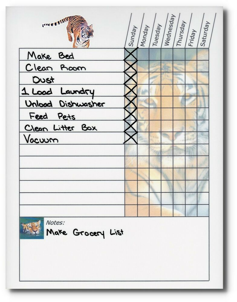 chore tracker for adults