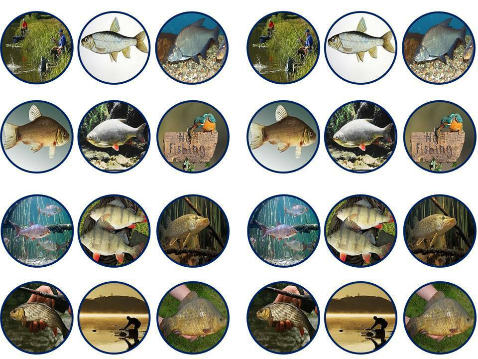 cake toppers fishing fish fisherman bun fairy cupcake