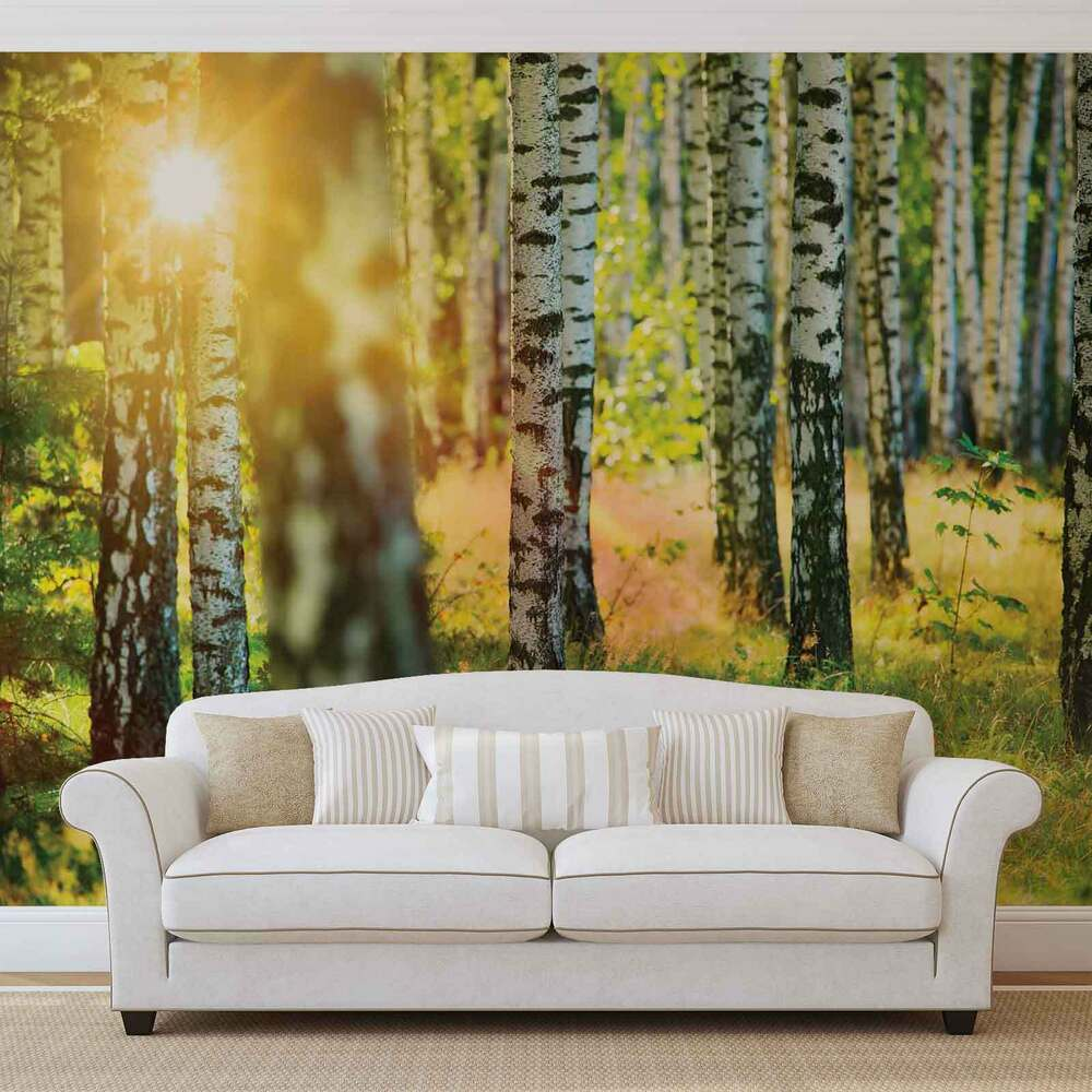 fototapete wandbild fototapeten bild tapete birken wald landschaft w1097 ebay. Black Bedroom Furniture Sets. Home Design Ideas