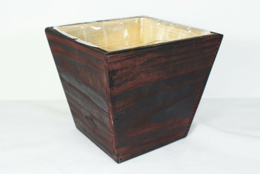 Cactus plant bonsai tree pot and planter wood tree with for Wooden cactus planter