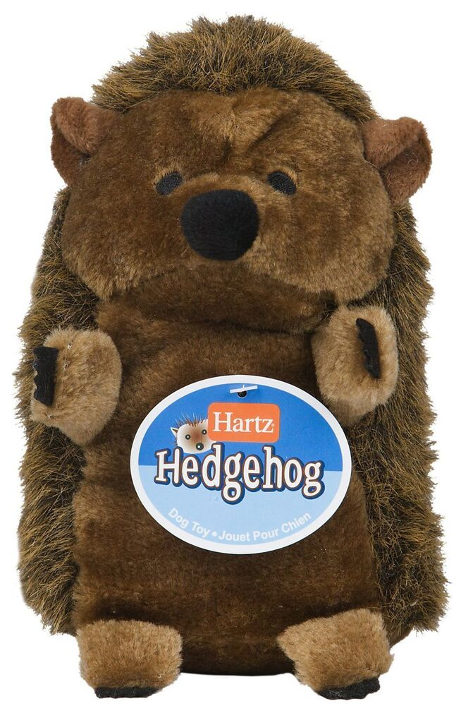 Large Toy Dogs : Hedgehog plush large dog toy colors may vary new free