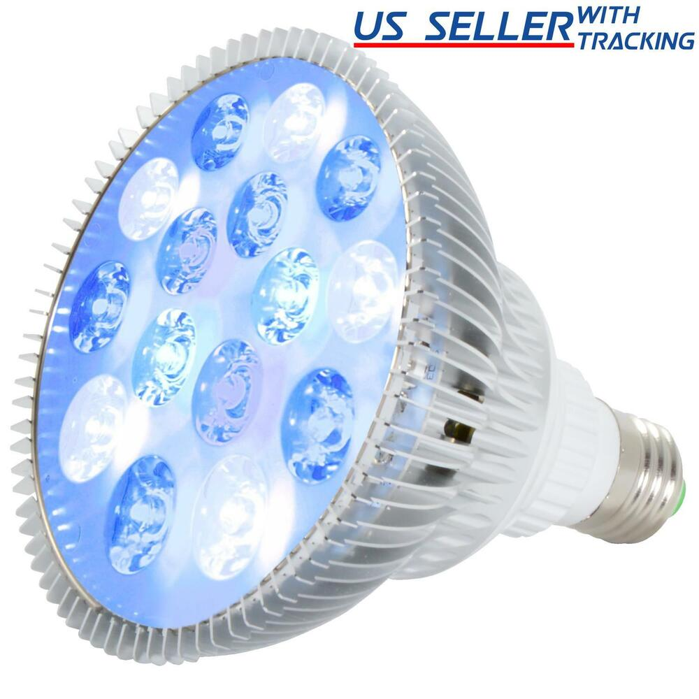 Abi 12w Blue And White Led Grow Light Bulb For Reef And