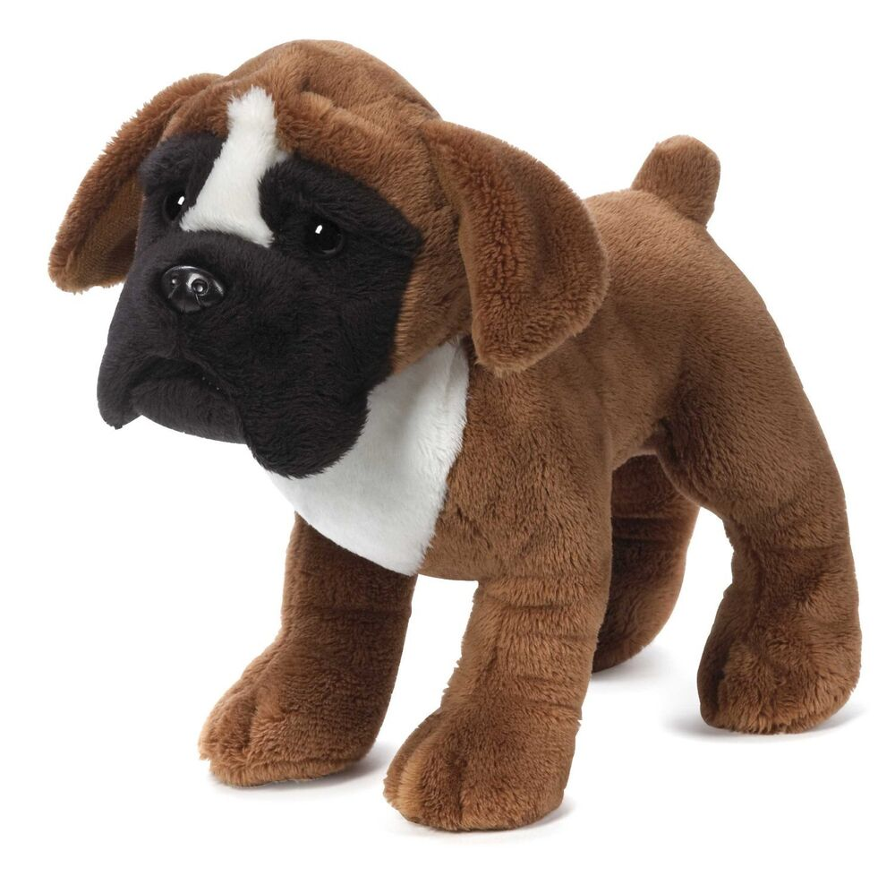 Dog With Stuffed Puppy