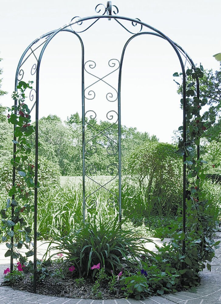 garden gazebo yard decor arch wedding trellis metal pergola backyard vines plant ebay. Black Bedroom Furniture Sets. Home Design Ideas