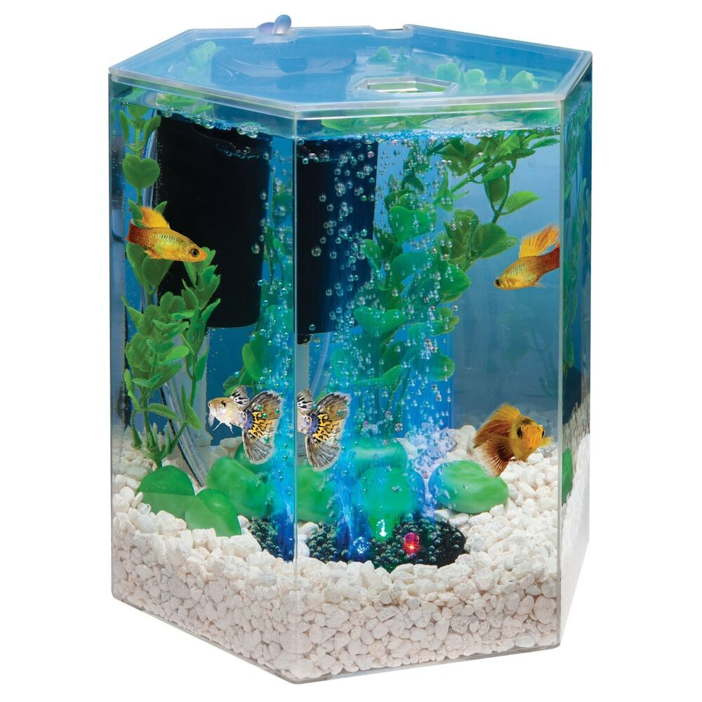 tetra 29040 hexagon aquarium kit with led bubbler 1 gallon ebay. Black Bedroom Furniture Sets. Home Design Ideas