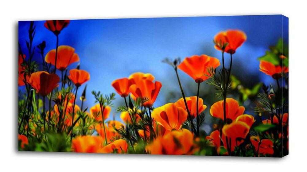 4 Sizes Red Poppy Field Canvas Print Wall Decor Art