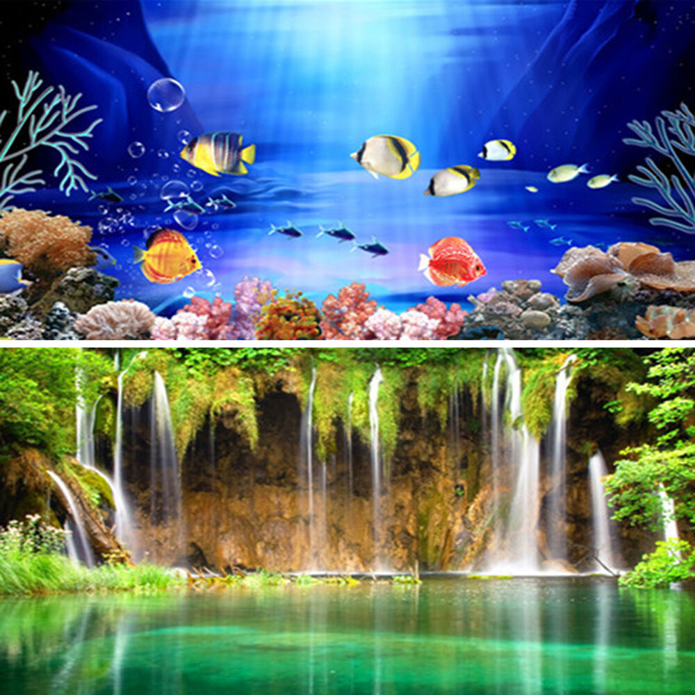 Wow double sided aquarium poster background fish tank Aquarium landscape