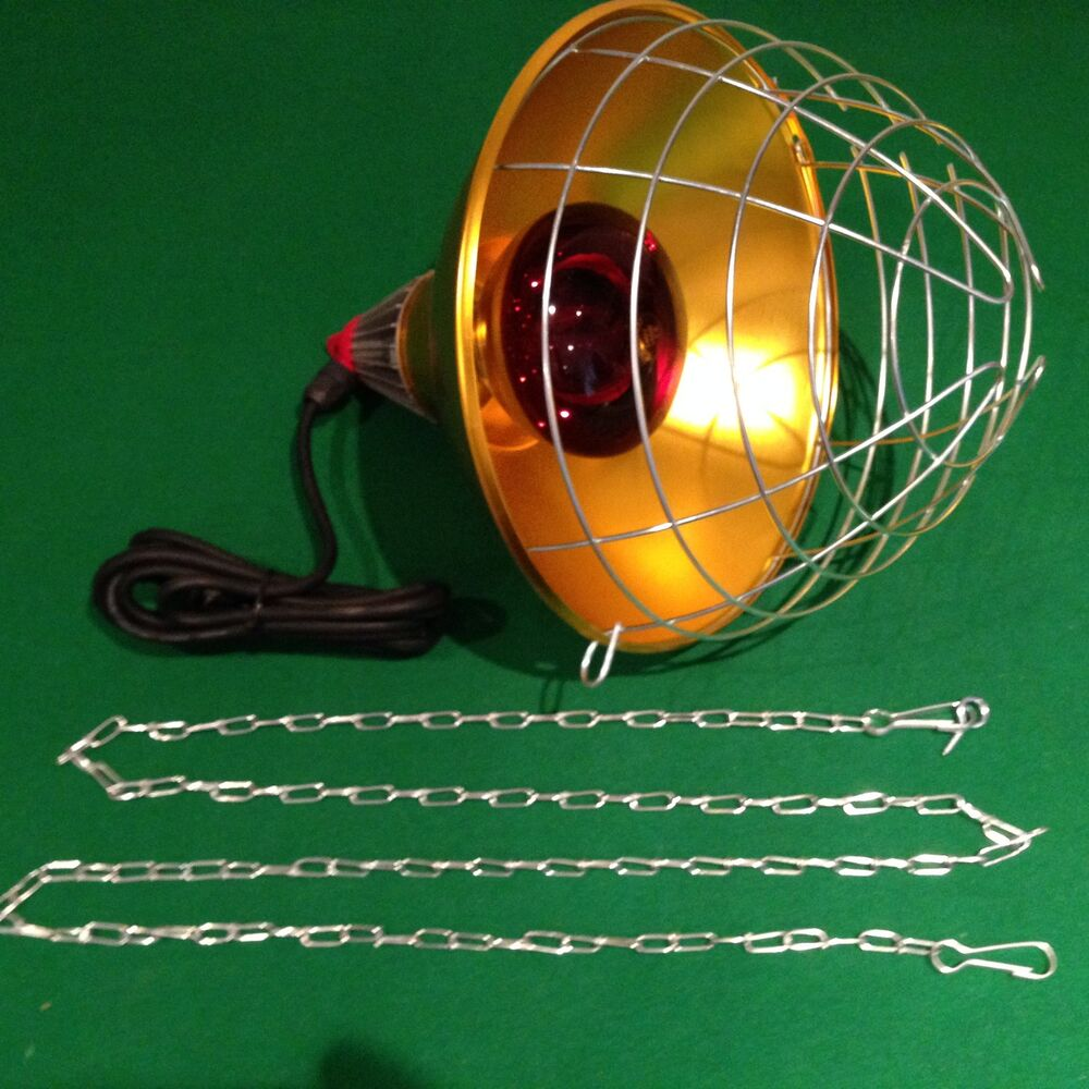 Infrared Brooding Heat Lamp Inc 250w Bulb Amp Wire Guard Chicks Puppies Livestock Ebay