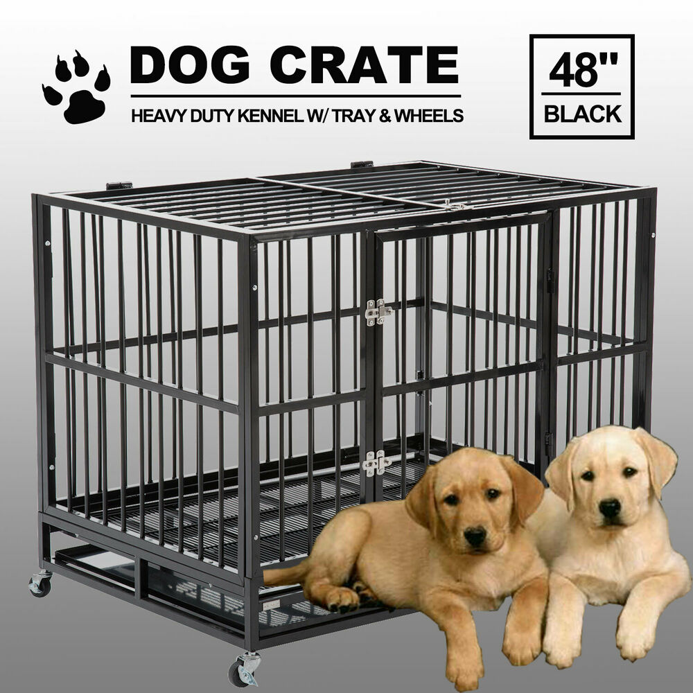 Trays For Large Dog Crates