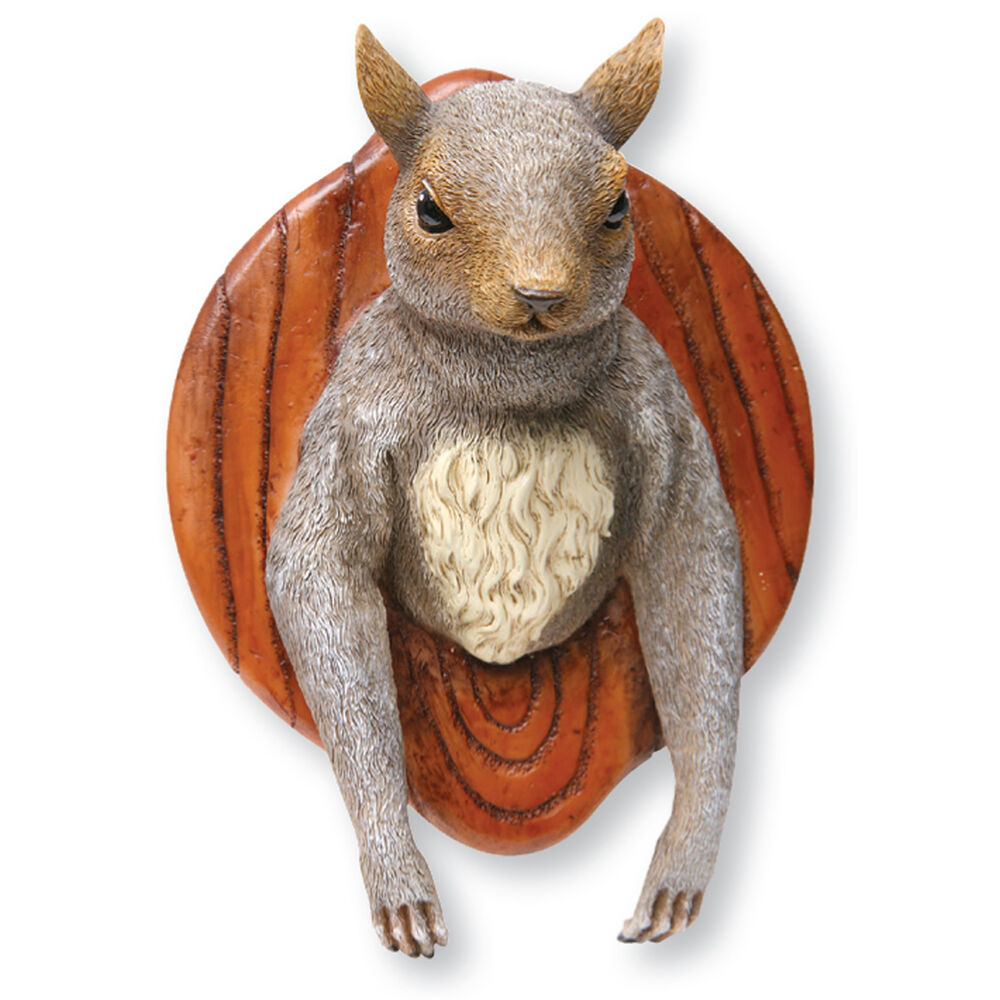 3d Fun Wall Mounted Squirrel Head Cast Resin Novelty