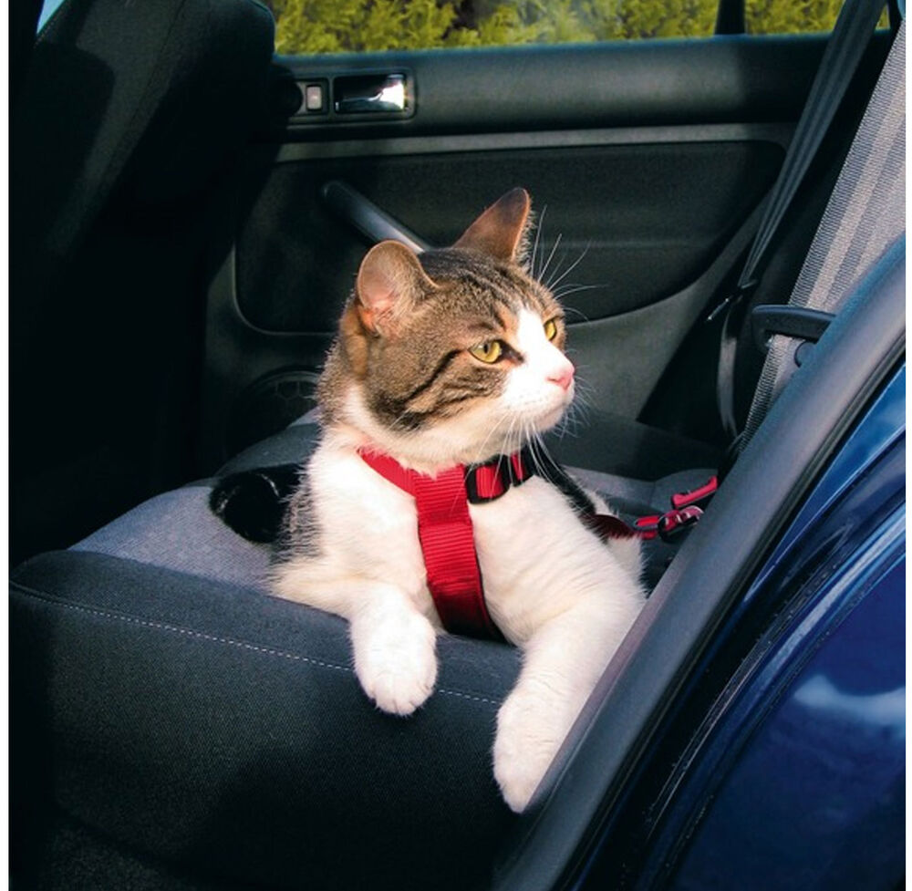 trixie cat safety belt harness tx1294 ebay. Black Bedroom Furniture Sets. Home Design Ideas