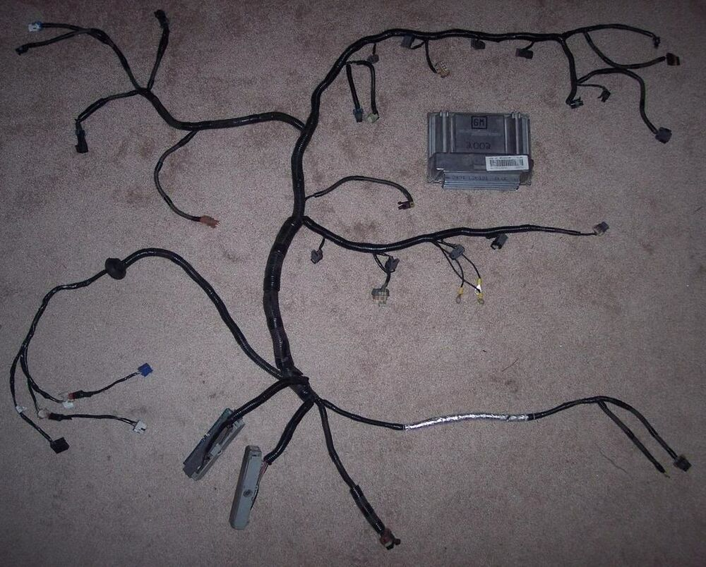s l1000 ls stand alone harness ebay 5.3 Engine Swap Wiring Harness at crackthecode.co