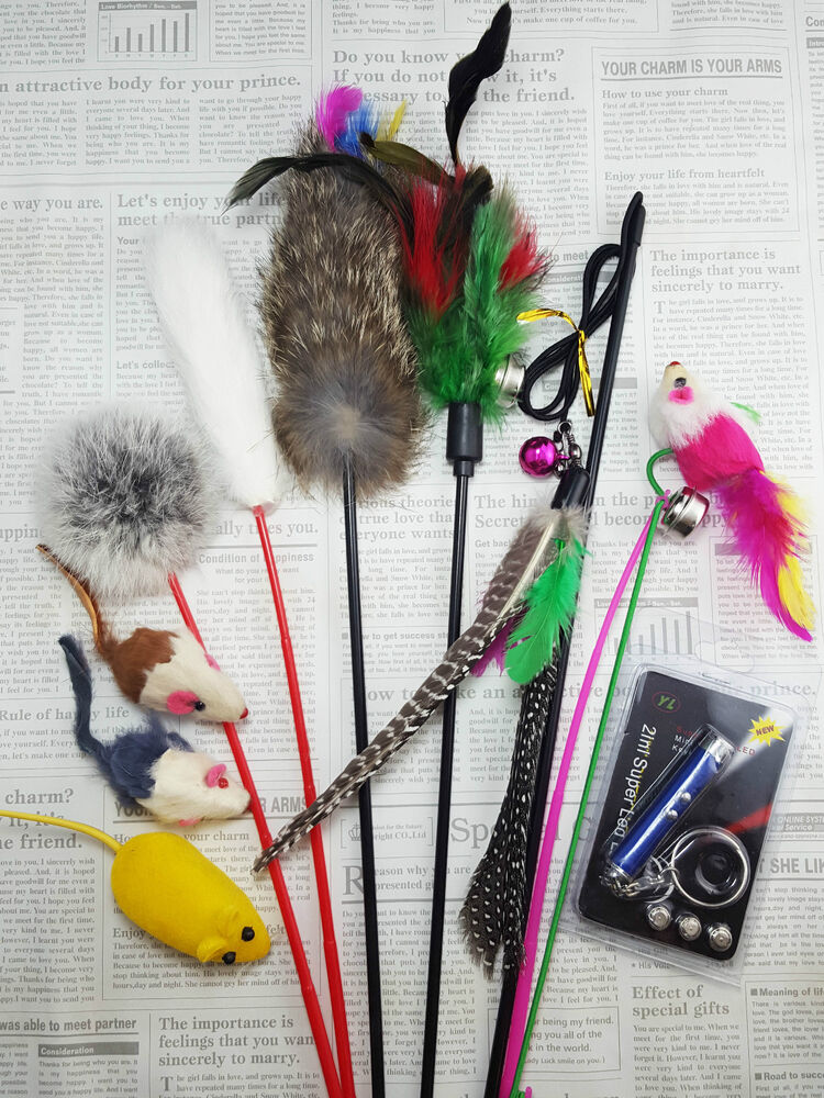 10 pieces assorted set pet cat toy teaser wand fishing for Cat wand toys