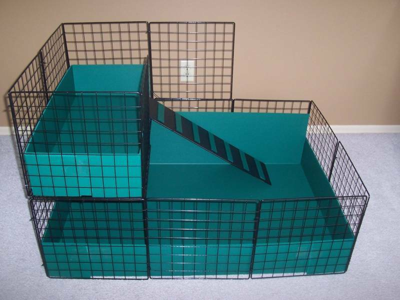 New large 42 x 28 guinea pig cage with 2nd level ebay for Buy guinea pig cage