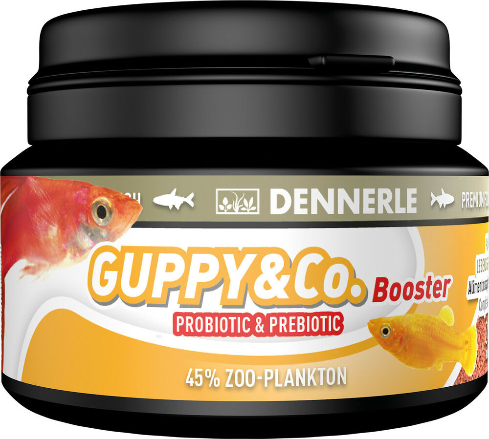 Dennerle premium fish food guppy co 100ml for guppies for Guppy fish food