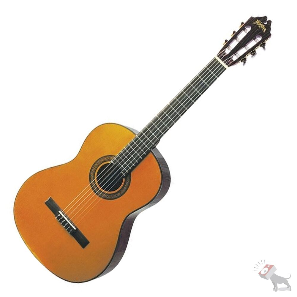 washburn c40 classical nylon string acoustic guitar w spruce top ebay. Black Bedroom Furniture Sets. Home Design Ideas