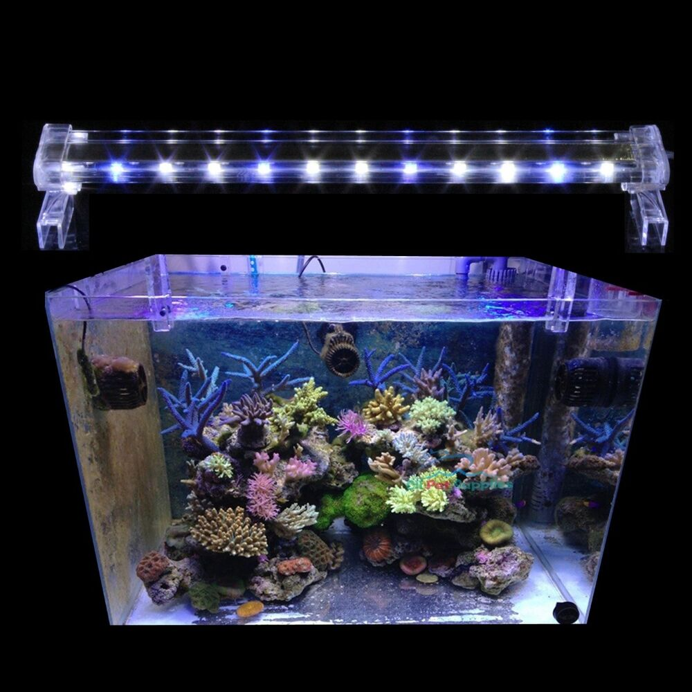 20 led light high lumen aquarium fish marine fowlr. Black Bedroom Furniture Sets. Home Design Ideas