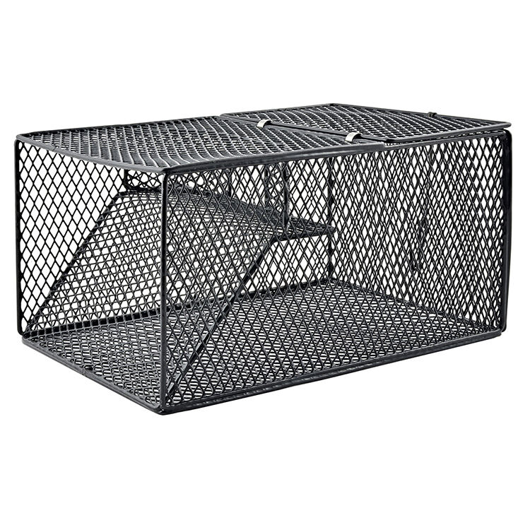 South bend wire crawfish trap sbcd 2369 ebay for Fish wire walmart