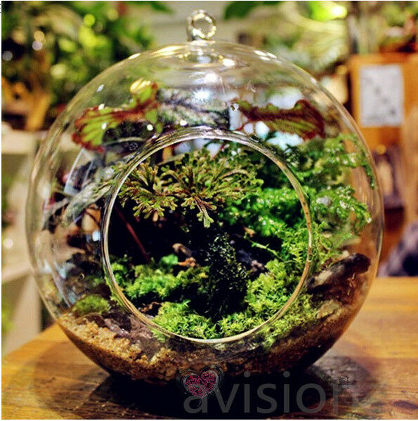 Decorating Clear Plastic Christmas Ornaments besides Galvanized Corrugated Metal Self Watering Planters besides Planter Ideas Landscape Contemporary With Seating Area Modern Outdoor Pots And Planters also Terra Cotta Planter Ideas likewise Back Yard Glam. on concrete coffee table with built in planter box