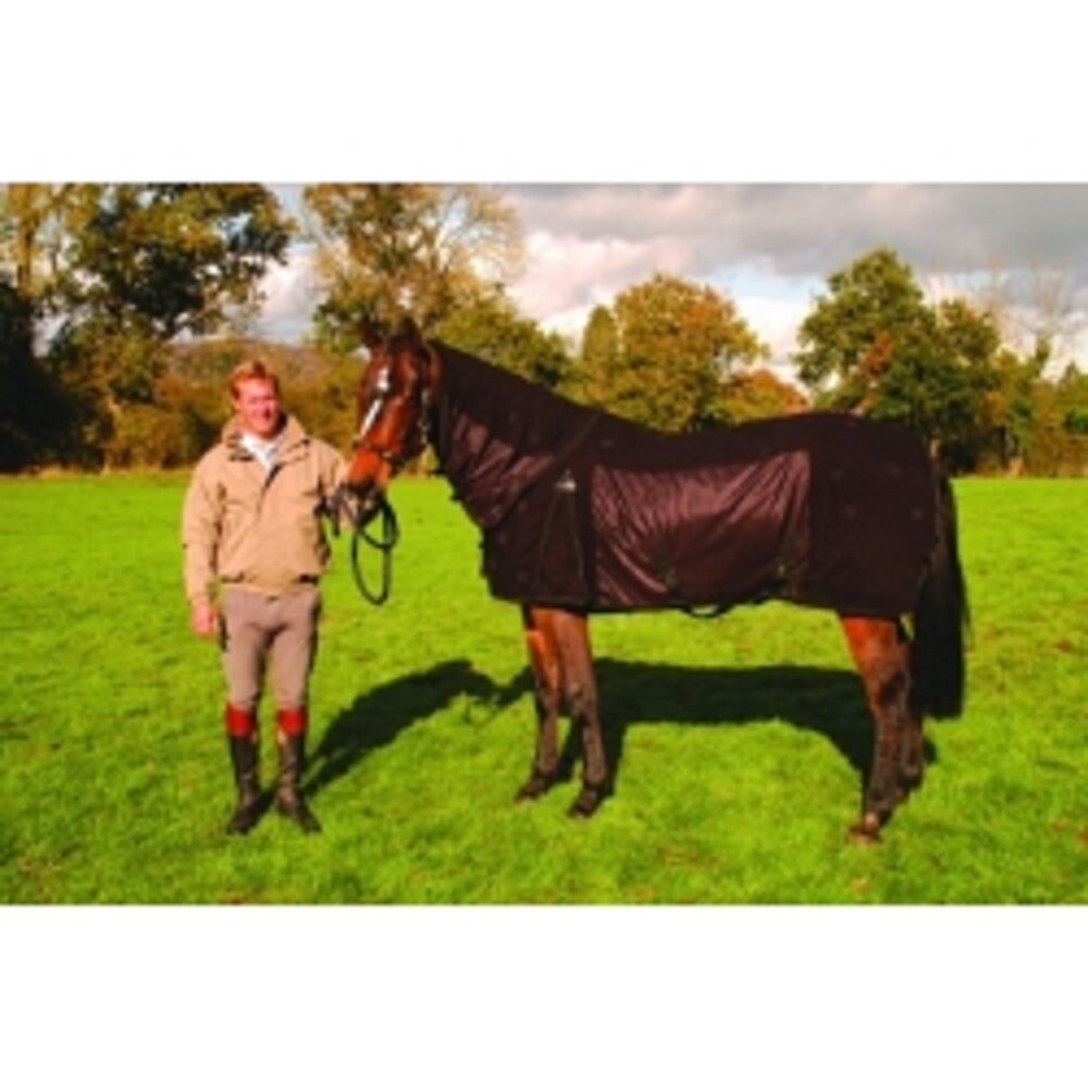 Magnetic Horse Pony Funnell Mesh Rug And Detachable Neck Cover