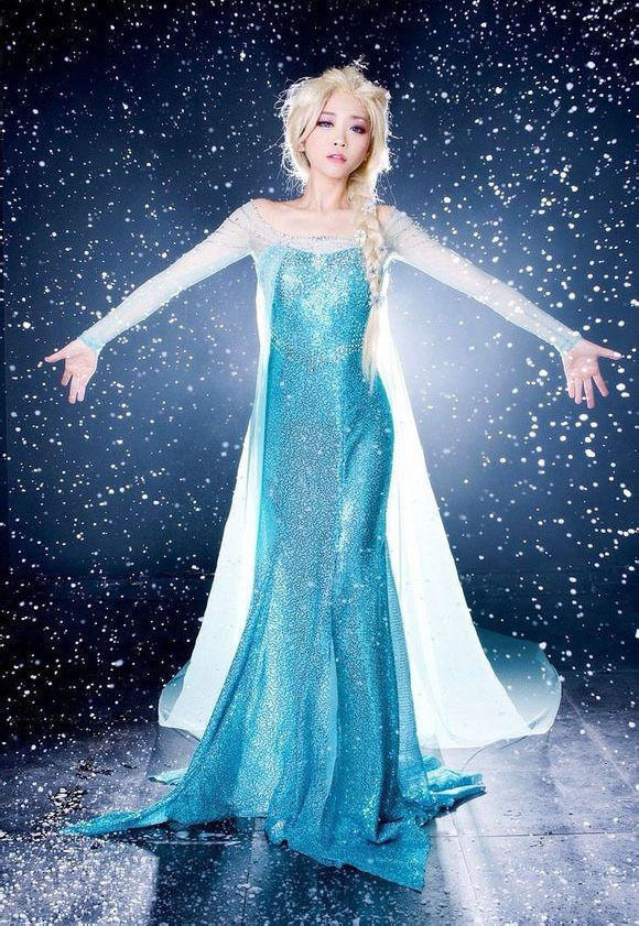 Adult Princess Frozen Elsa Women Girl Costume Long Dress ...
