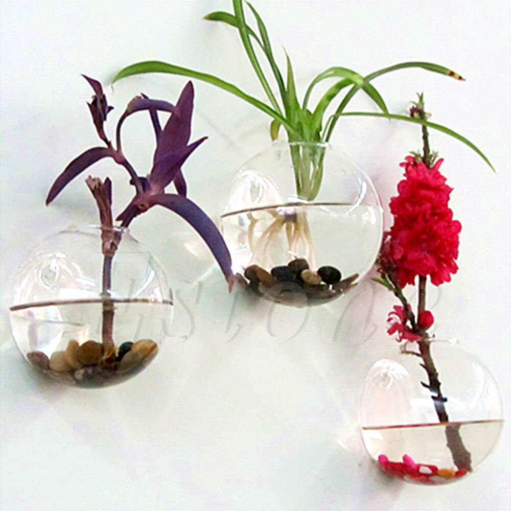 Wall Hang Glass Flower Planter Vase Terrarium Container