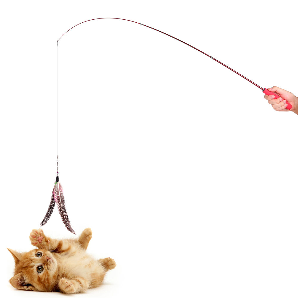 Retractable teaser cat catcher fishing pole wand rod with for Cat fishing 2