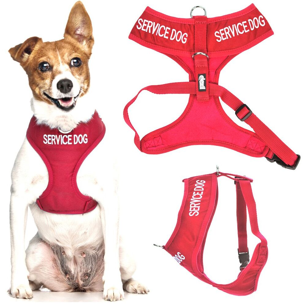 Service Dog Harness Front Clip