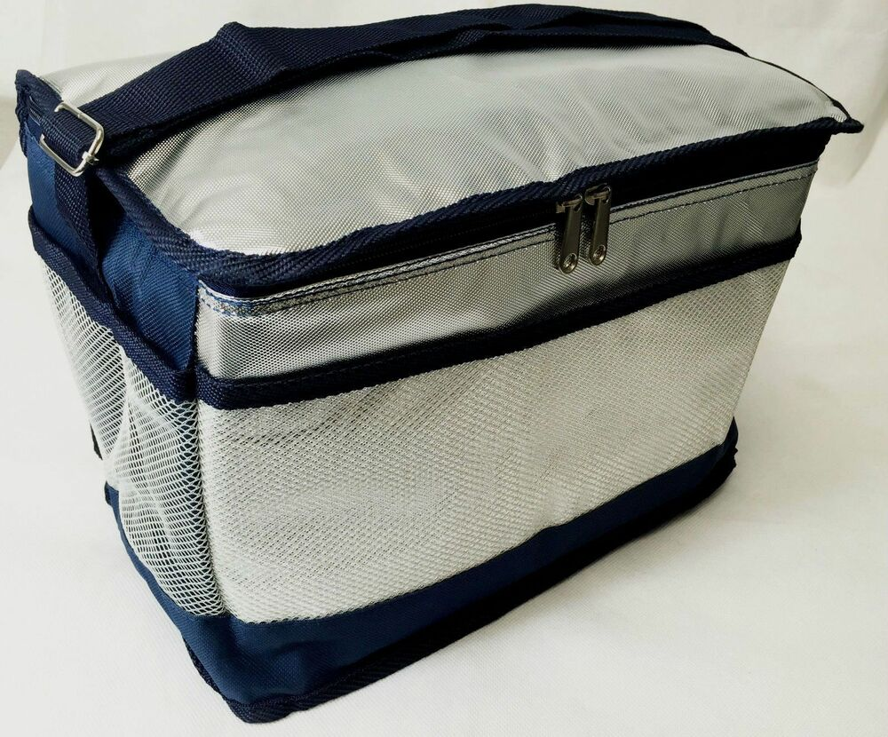 Insulated Carrying Bag : Insulated thermal cooler cool picnic bag small medium