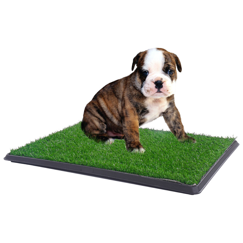 My Dog Peed On My New Rug: Puppy Potty Patch Pet Trainer Indoor Training Pet Dog