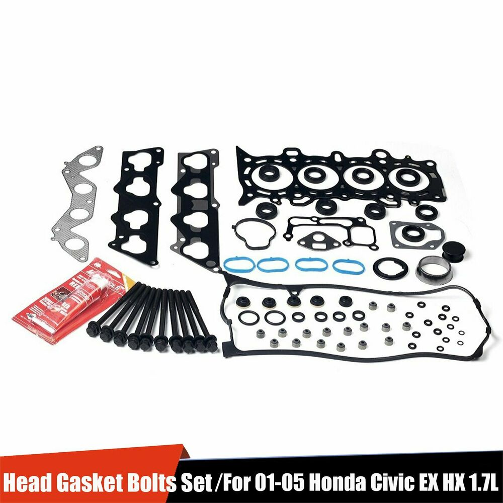 Manual Geared Transmission Drive Belt Kevlar Corded Fits Stiga Castel Garden Mountfield 1538m Sd98 Lawnking Ride On Mowers 1350620130 705 P additionally ST1300 c also 2008 Honda Transalp XLV Decals Stickers as well 251536791558 additionally 32789730582. on honda fit accessories