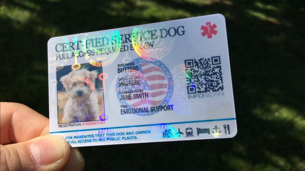 Holographic Service Dog Id Card For Service Medical