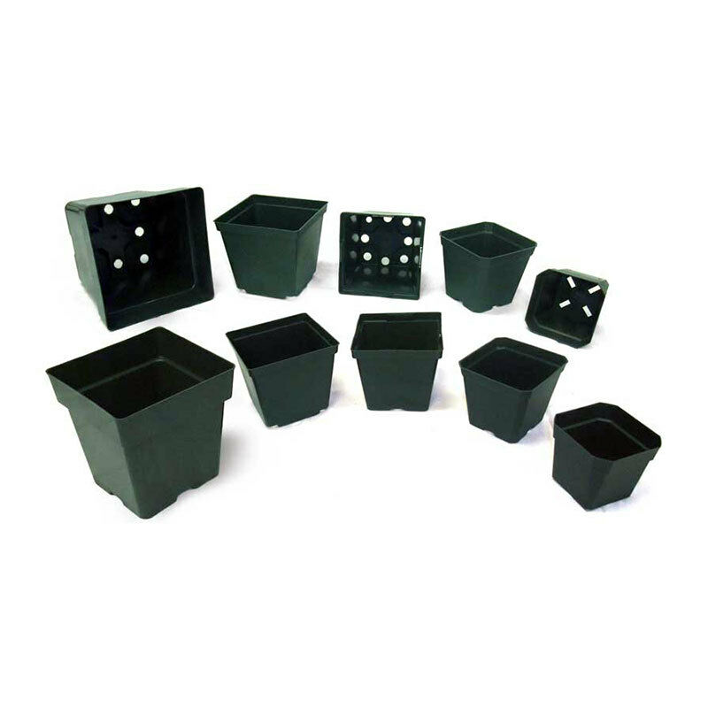 10 50 100 Square Green Injection Molded Pots Seed