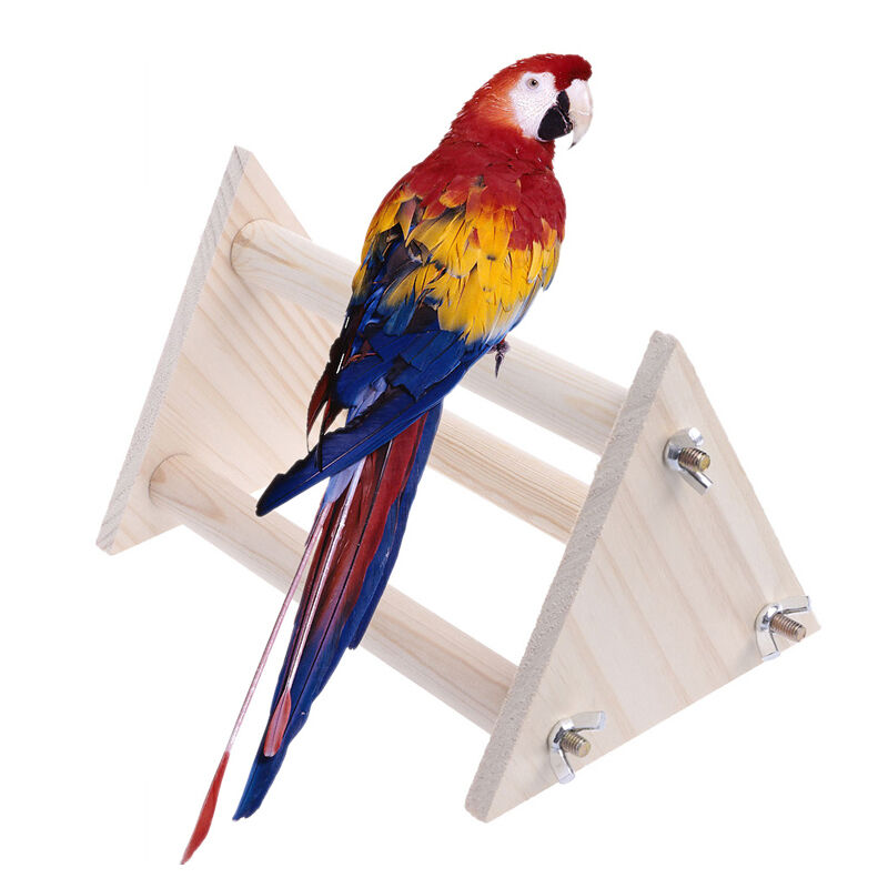 Funny Parrot Bird Perch Stand Play Toys Gym Wooden