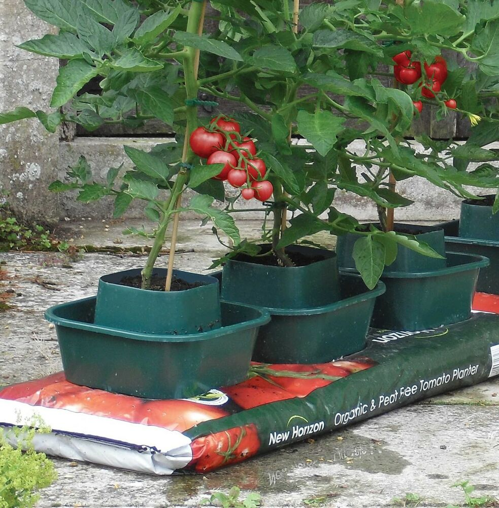 Soil For Tomatoes: 6 X Grow Bag Pots Plant Garden Planters Water Trough