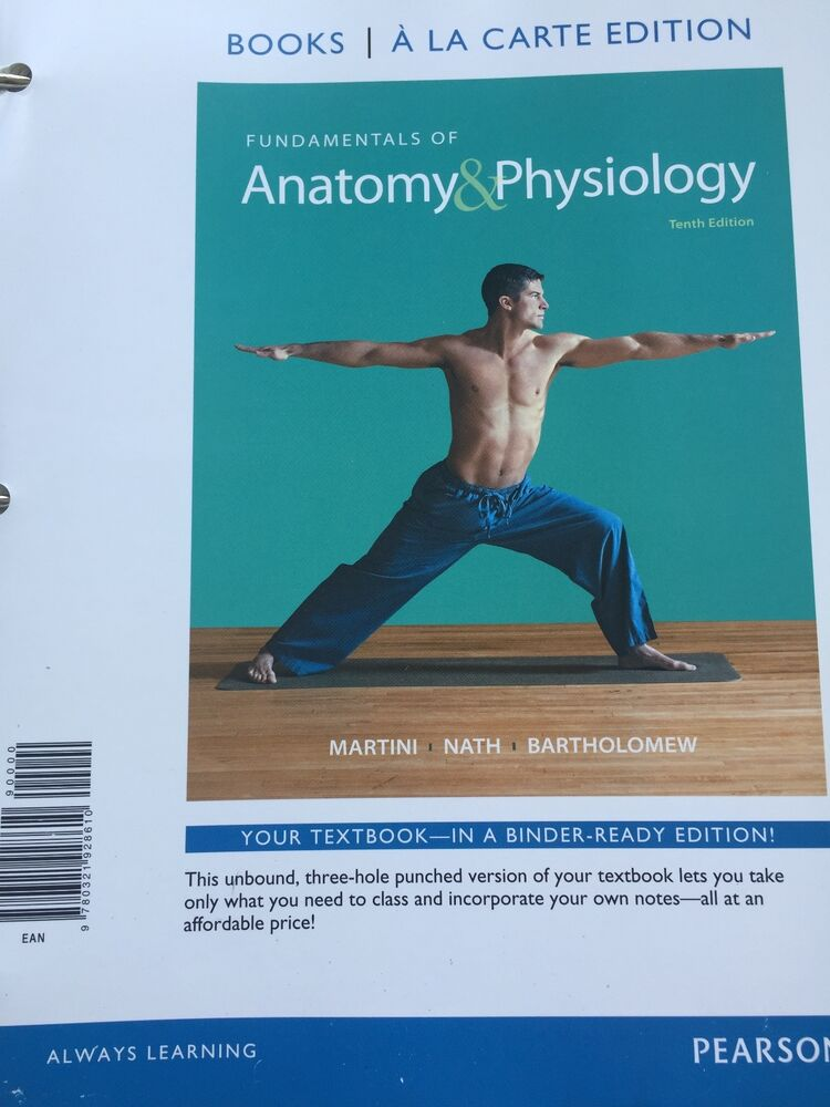Fantástico Fundamentals Of Anatomy And Physiology Imágenes ...