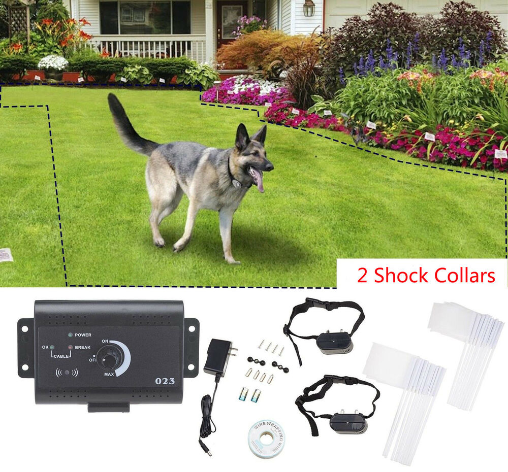 Underground Electric Dog Fence Fencing 2 Shock Collars