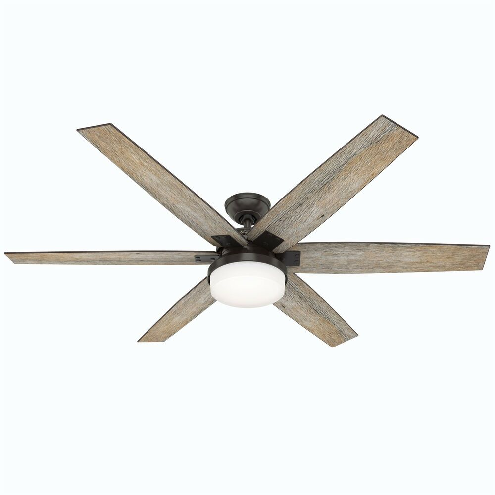 Hunter Ashbrook 48 Brushed Cocoa Ceiling Fan With Light: Hunter Ceiling Fan