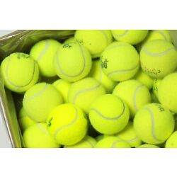 Kyпить 100 Used Tennis Balls - FREE SHIPPING - Today - Support our Non-profit! на еВаy.соm